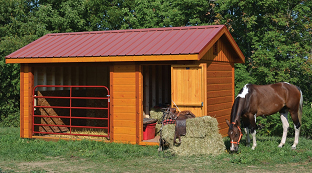 sheds-animal-shelters.jpg
