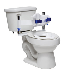Toilet Support System (452221P)