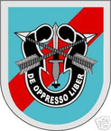 STICKER U S ARMY FLASH  20TH SPECIAL FORCES GROUP