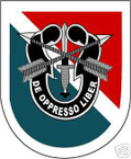 STICKER U S ARMY FLASH  11TH SPECIAL FORCES GROUP