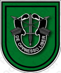 STICKER U S ARMY FLASH  10TH SPECIAL FORCES GROUP