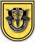 STICKER U S ARMY FLASH   1ST SPECIAL FORCES GROUP