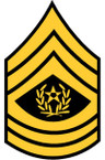 STICKER RANK US ARMY E9 E9CSM1