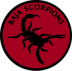 STICKER USAF AIR FORCE BAJA SCORPIONS O