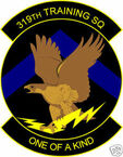 STICKER USAF 319TH TRAINING SQUADRON