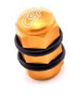 CSP VALVE CAP SET
