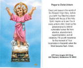 Prayer to Christ Unborn Card