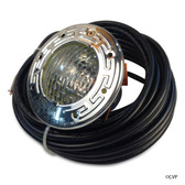 PENTAIR |  SpaBrite Spa Light 60 Watts 30 ft Cord | 78106000 | STAINLESS STEEL, SPA BRITE  | 78106000
