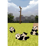 National Geographic: Panda For Nintendo DS DSi 3DS 2DS - EE674631
