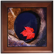 3DROSE Ft 209965 1 Michigan Black River Red Maple Leaf In A Small Lava - EE686180