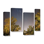 Artwall 4-piece Cody York's Star Trails Gallery-Wrapped Canvas - EE689334