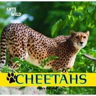 Cheetahs Cats Of The Wild Library By Henry Randall Book - D630818