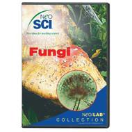 Neo Sci Fungi Neo Lab Software Individual License - E481002