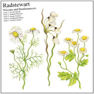 Wiccans & Beatlemancers By Radstewart On Audio CD Album Folk 2014 - E512017