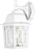"""NUVO Lighting 60/4921 Banyan 1 Light 12"""" Outdoor Wall with Clear Water Glass"""