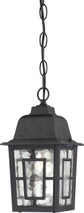"""NUVO Lighting 60/4933 Banyan 1 Light 11"""" Outdoor Hanging with Clear Water Glass"""