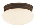 """Dash 8"""" Indoor Rubbed Oil Bronze Traditional Flushmount with Opal Glass Globe Shade"""