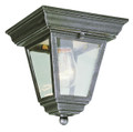 "Robertson 7.25"" Outdoor Swedish Iron Traditional Flushmount Lantern"