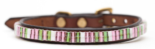 Palm Beach Pet Collar