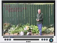 video-vole-control.jpg