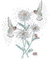 Ovrs6171 - Hummingbirds with Daisies