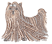 Ovrs1229 - Yorkshire Terrier Dog