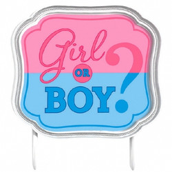 Girl or Boy? Gender Reveal Baby Shower Cake Topper