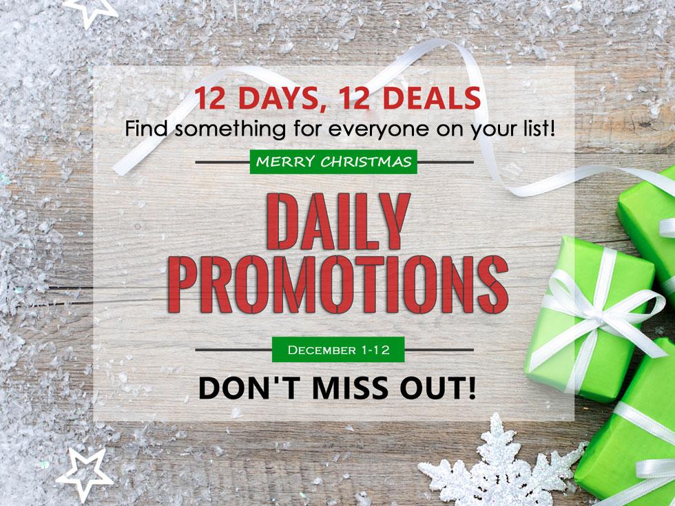 12-days-of-christmas-website.original.jpg