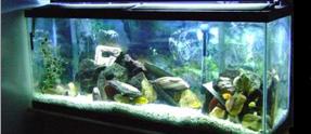Aquarium Ballast