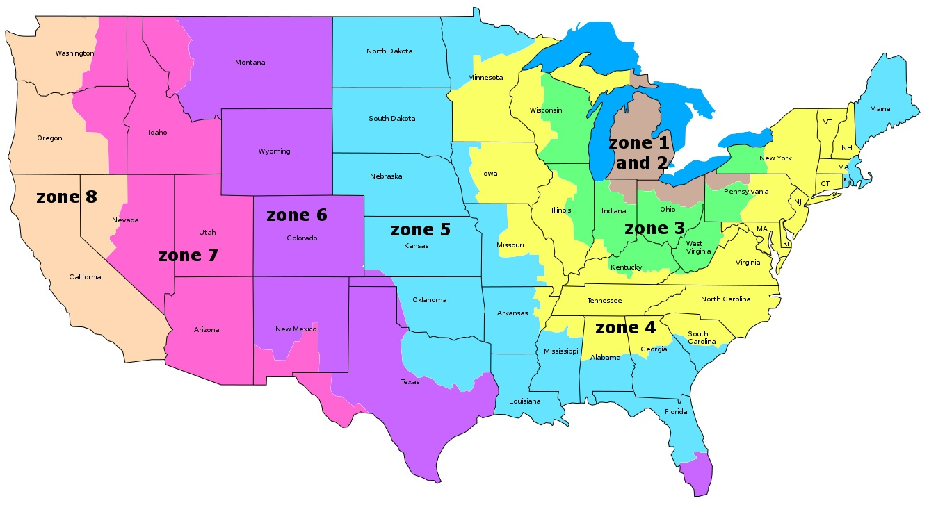 USPS And UPS ZONE BRITTANYS WHOLESALE DOLL CLOTHES - Ups shipping zone map