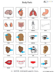 PECS - Body Parts