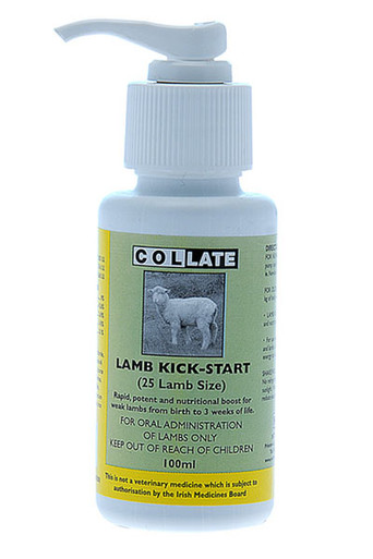 Collate Lamb Kick Start