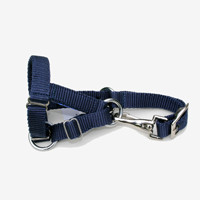 Easy Clip Head Collar