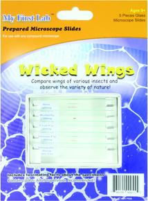 Slides - Mini Set - Wicked Wings