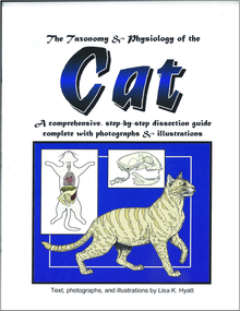 Cat Dissection Reference Guide