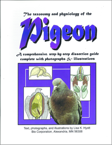 Pigeon Dissection Reference Guide