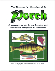 Perch Dissection Reference Guide