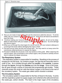 Fetal Pig Dissection Packet - Advanced