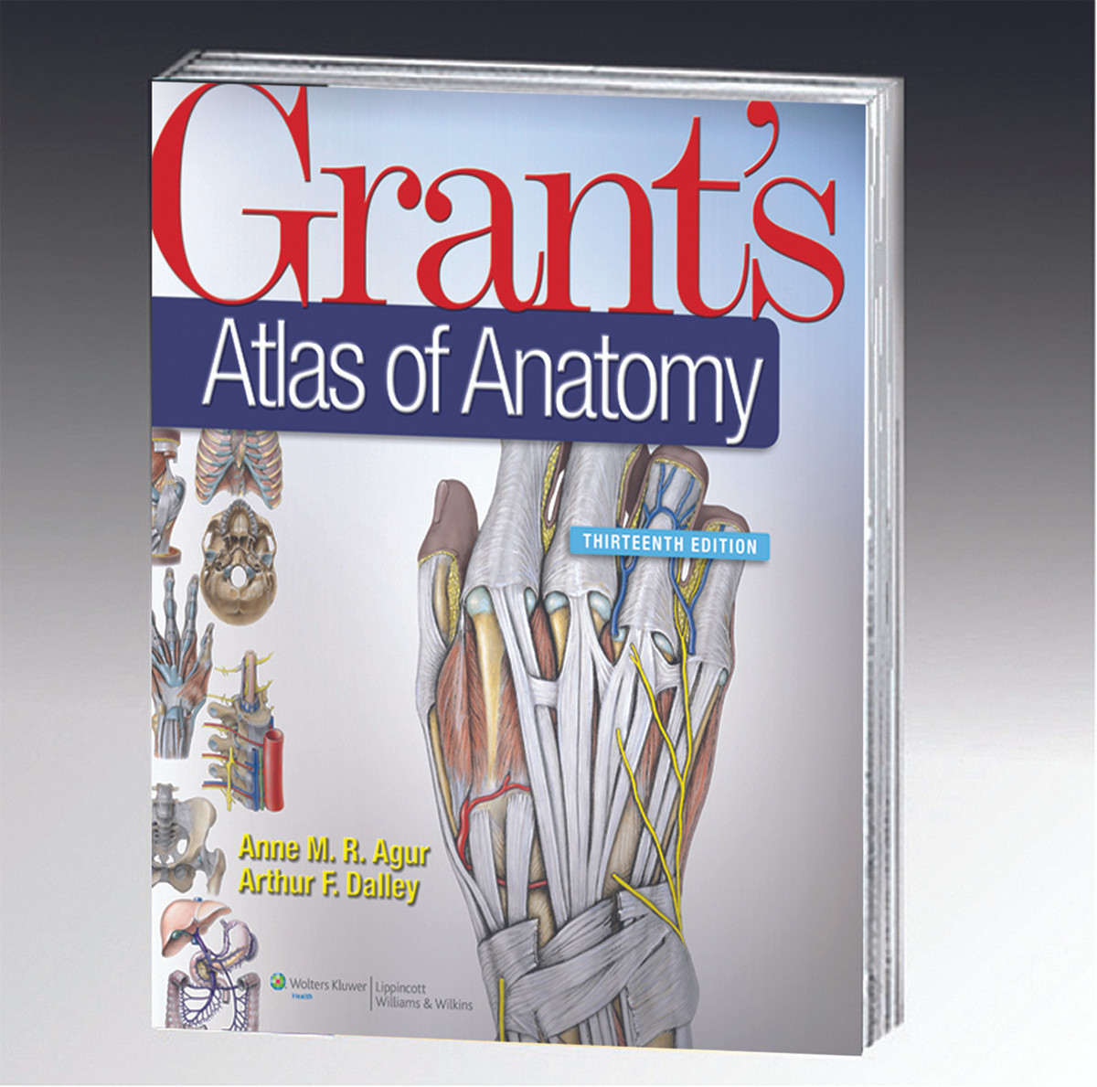 Book - Grant\'s Atlas of Anatomy - Biologyproducts.com