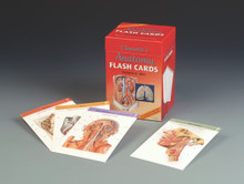 Clemente's Anatomy Flash Cards