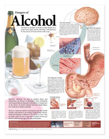 Reference Chart - Dangers of Alcohol