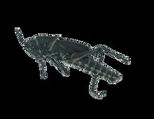 Plain Grasshoppers - Unit of 10