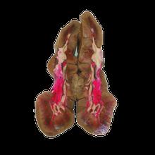 Beef Kidney - Single