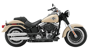 Harley Softail Saddlebags