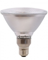 Metal Halide Par38 Medium Base