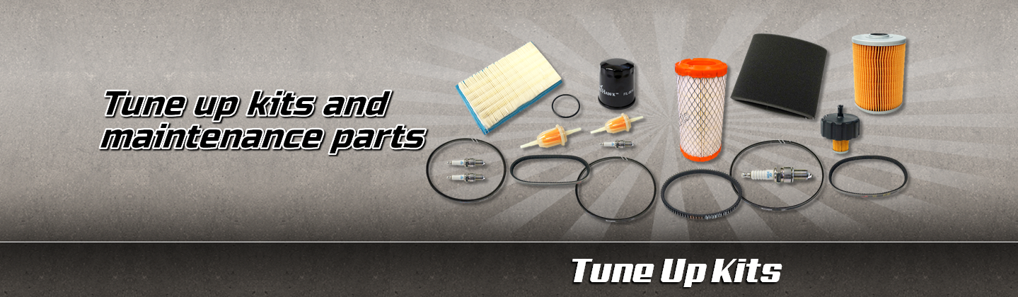 tune up kit and maintenance parts