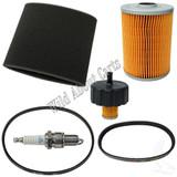 Yamaha G2/G9/G11 4 Cycle Gas Tune Up w/ Drive & Generator Belts
