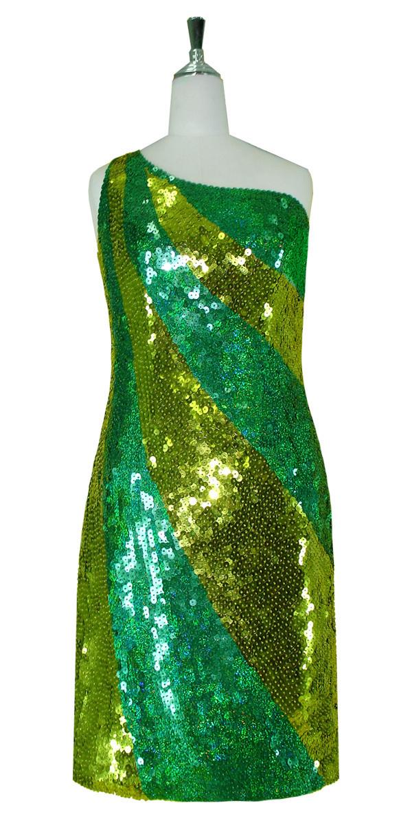 Short Sequin Dress