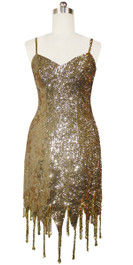 Short Handmade 8mm Cupped Sequin Dress in Metallic Light Gold with Jagged Beaded Hemline back view