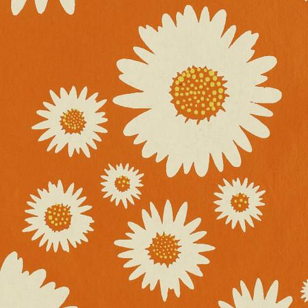 Gift Wrap - Daisies - Orange